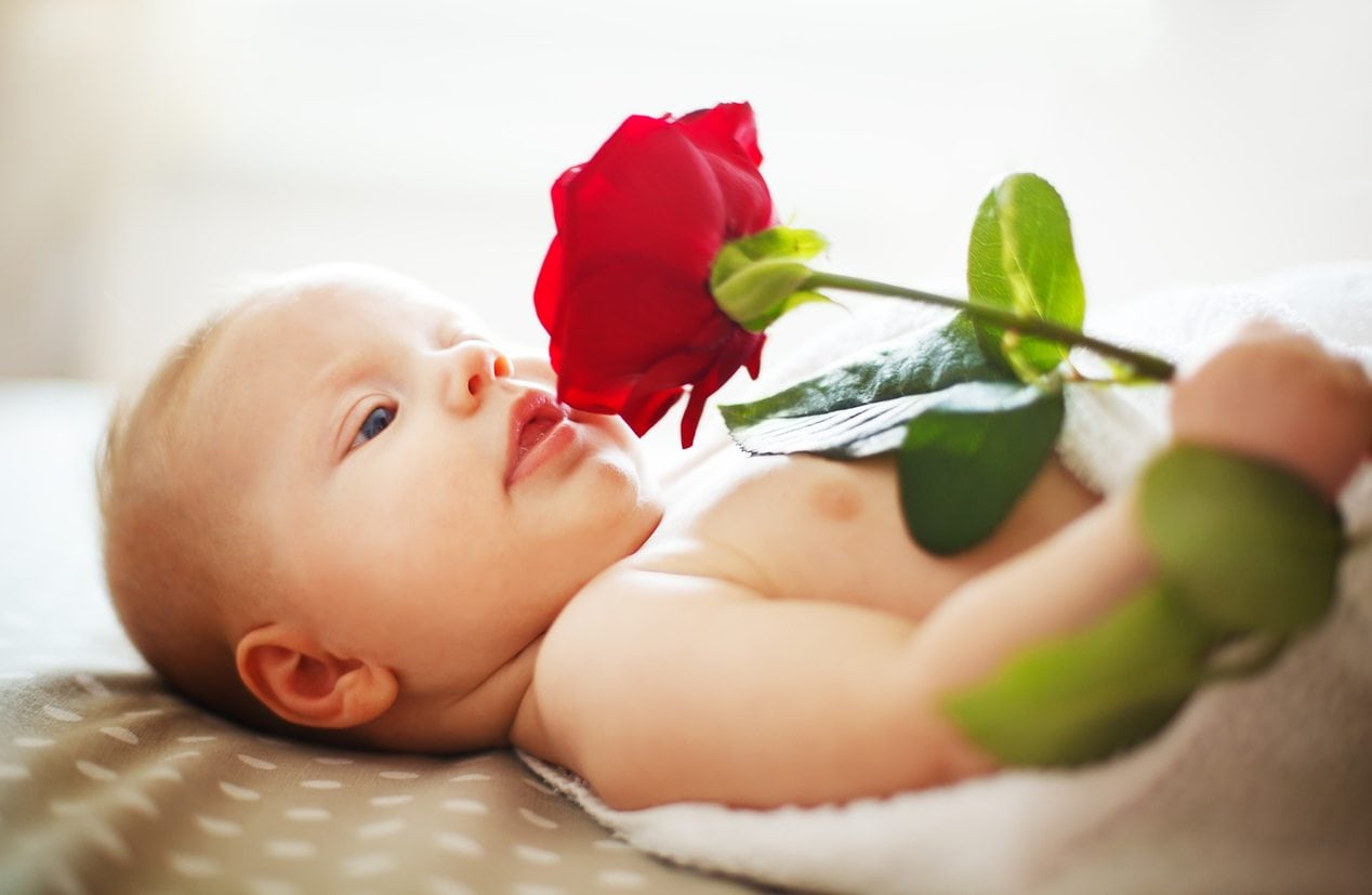 Baby's Senses of Taste and Smell