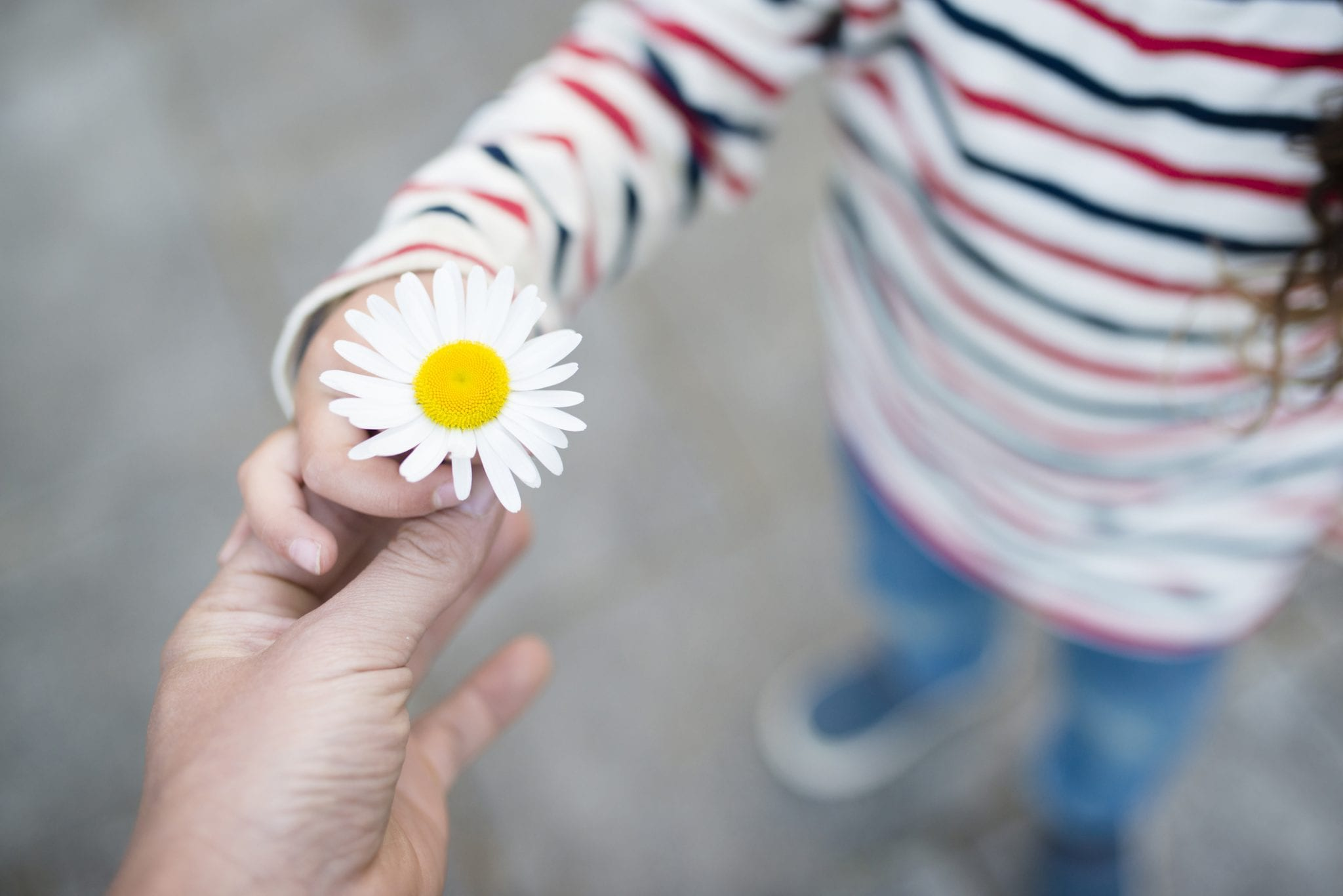 Random Acts of Kindness to Do with Children | Baby Chick