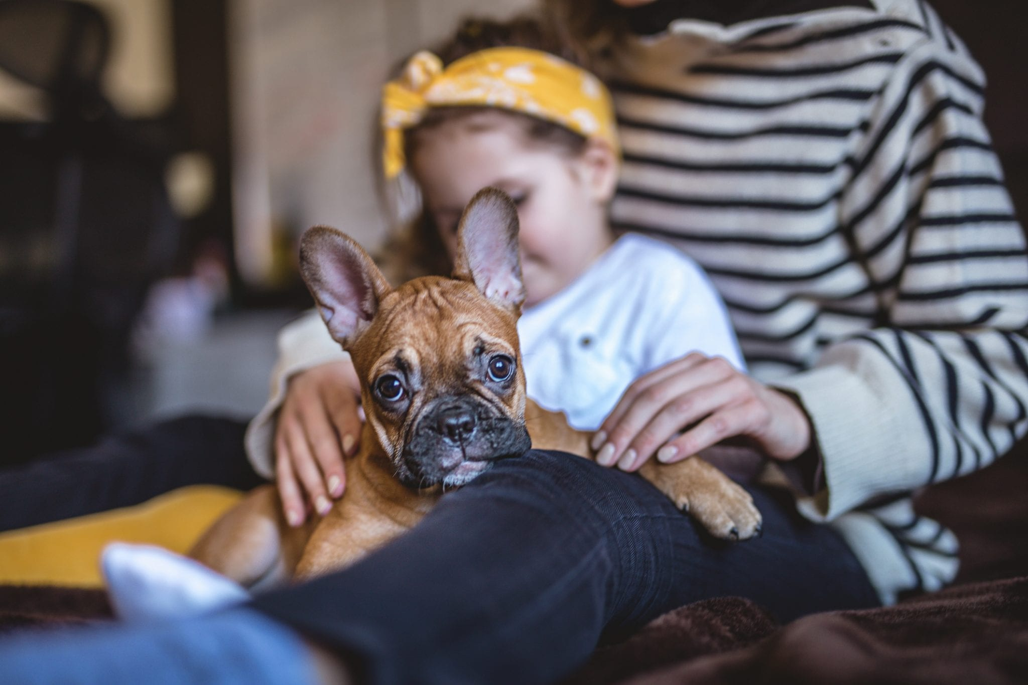 The Pros and Cons of Raising Kids with a Family Pet | Baby Chick