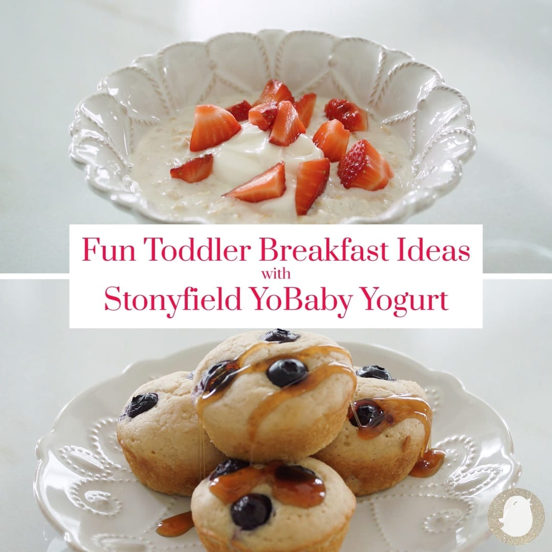Breakfast recipes for yogurt pancake muffins and overnight oats.
