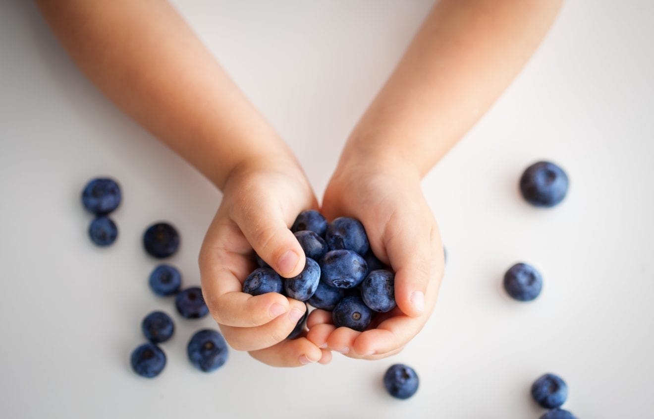 Handful of berries in children's hands