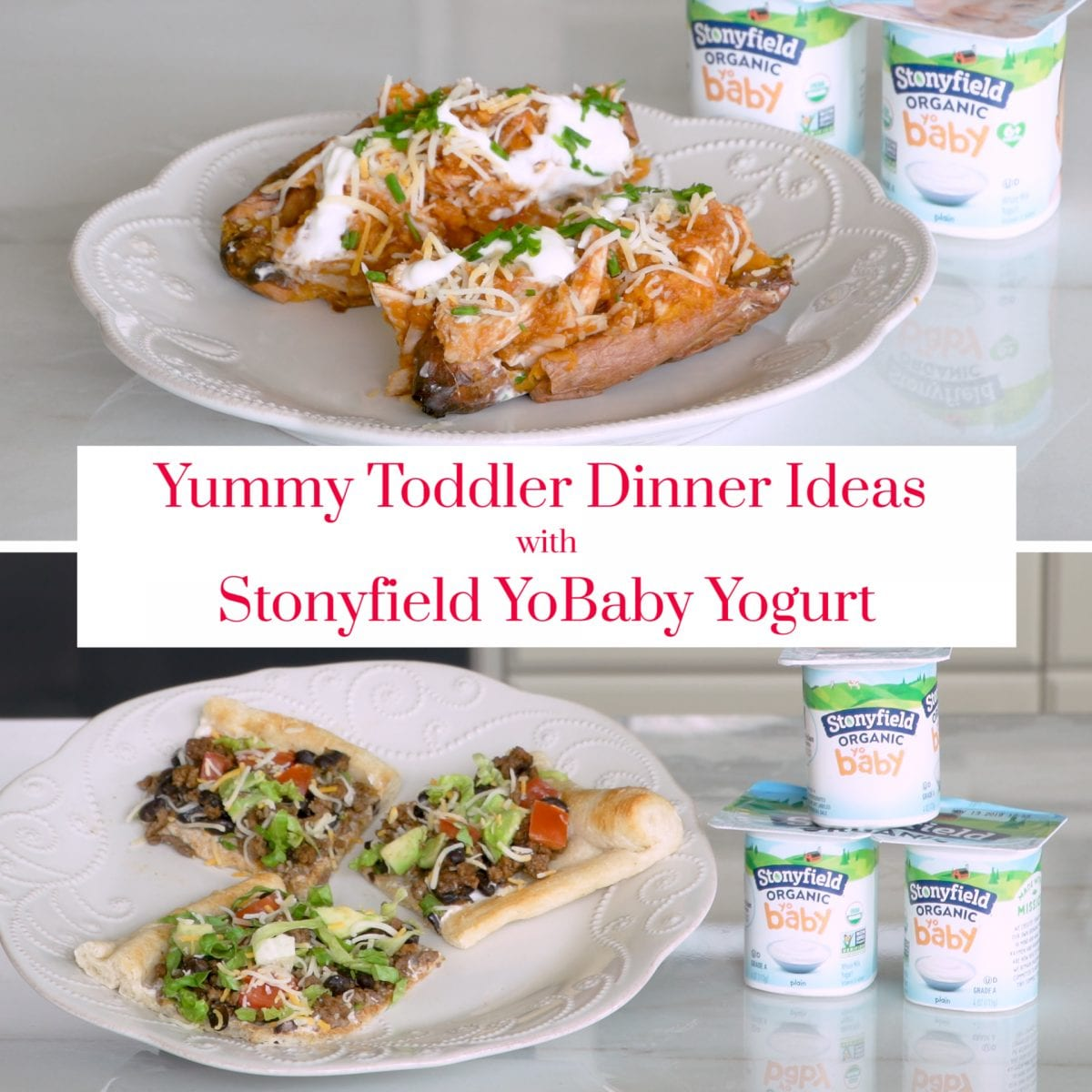 Stonyfield Dinner Recipes with their YoBaby yogurt.