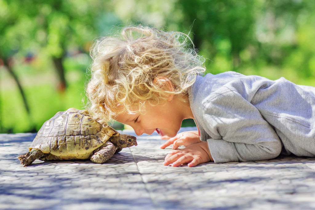 Little boy laying on the ground head to head with his turtle.